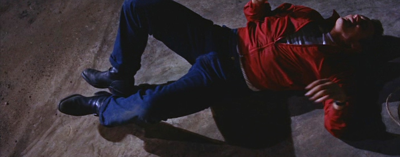 27dab168b1f Rebel Without a Cause – Red Windbreaker and Jeans | BAMF Style