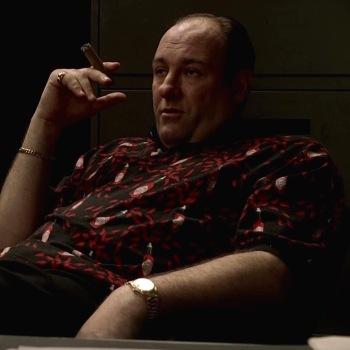 """James Gandolfini as Tony Soprano on The Sopranos (Episode 5.02: """"Two Tonys"""")"""