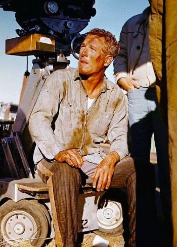 Paul Newman on set during production of Cool Hand Luke (1967).