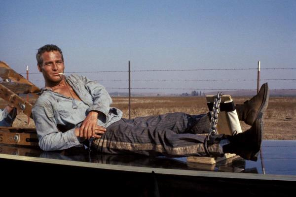 "Paul Newman on set, emphasizing the ""cool"" in Cool Hand Luke."