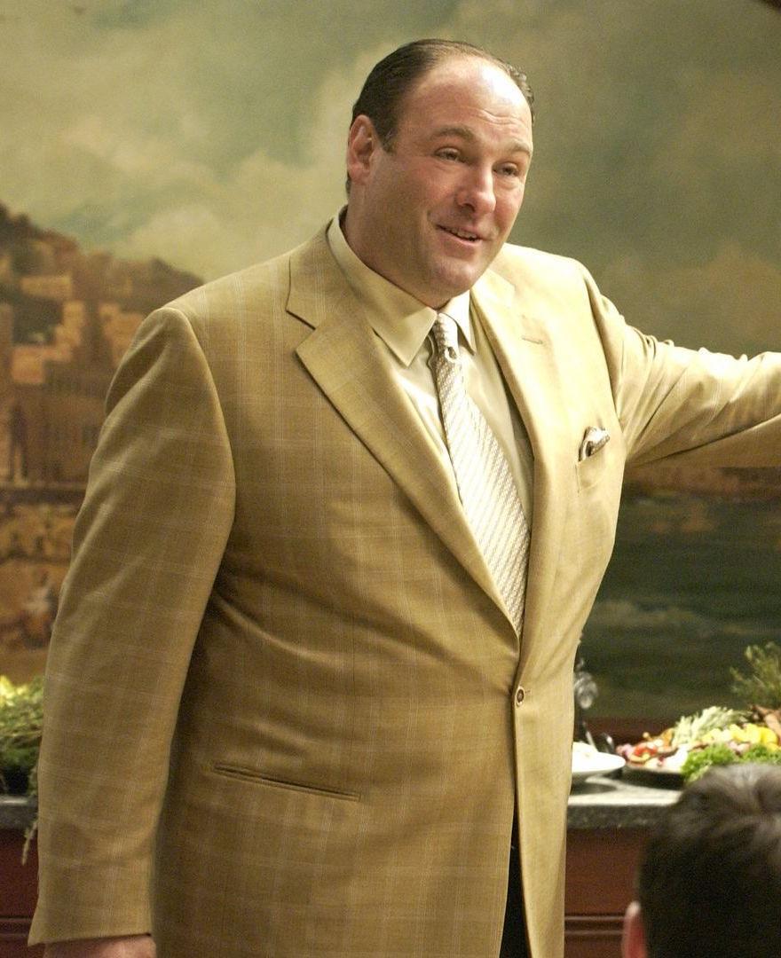 Tony Soprano's Tan Windowpane Sport Jacket | BAMF Style