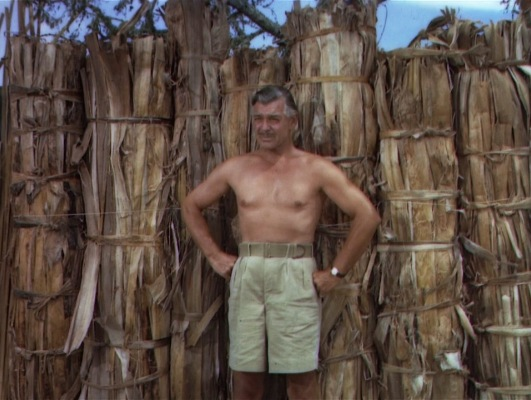 Don't try this at home: advice that applies to both voluntarily being a spear target and wearing high-waisted pleated shorts with no shirt.