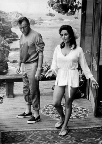 Richard Burton and Elizabeth Taylor at Big Sur during production of The Sandpiper (1965)