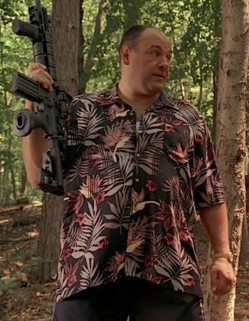 "James Gandolfini as Tony Soprano on The Sopranos (Episode 6.13: ""Soprano Home Movies"")"