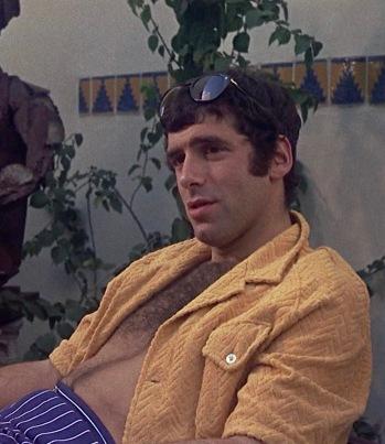 Elliott Gould as Ted Henderson in Bob & Carol & Ted & Alice (1969)