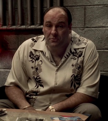 "James Gandolfini as Tony Soprano on The Sopranos (Episode 5.05: ""Irregular Around the Margins"")"