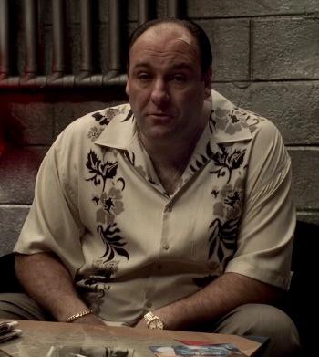 "James Gandolfini as Tony Soprano on The Sopranos (Episode 5.05: ""Irregular Around the Margins"")"