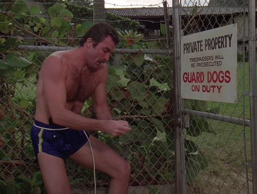 Clad in his swim trunks, Magnum works the first of several locks as part of his job testing the security of Robin's Nest. The rope around his waistband is connected to his waterproof bag of additional gear.