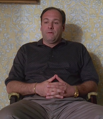 "James Gandolfini as Tony Soprano on The Sopranos (Episode 1.05: ""College"")"