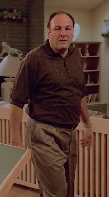 "James Gandolfini as Tony Soprano on The Sopranos (Episode 1.05: ""College"")"